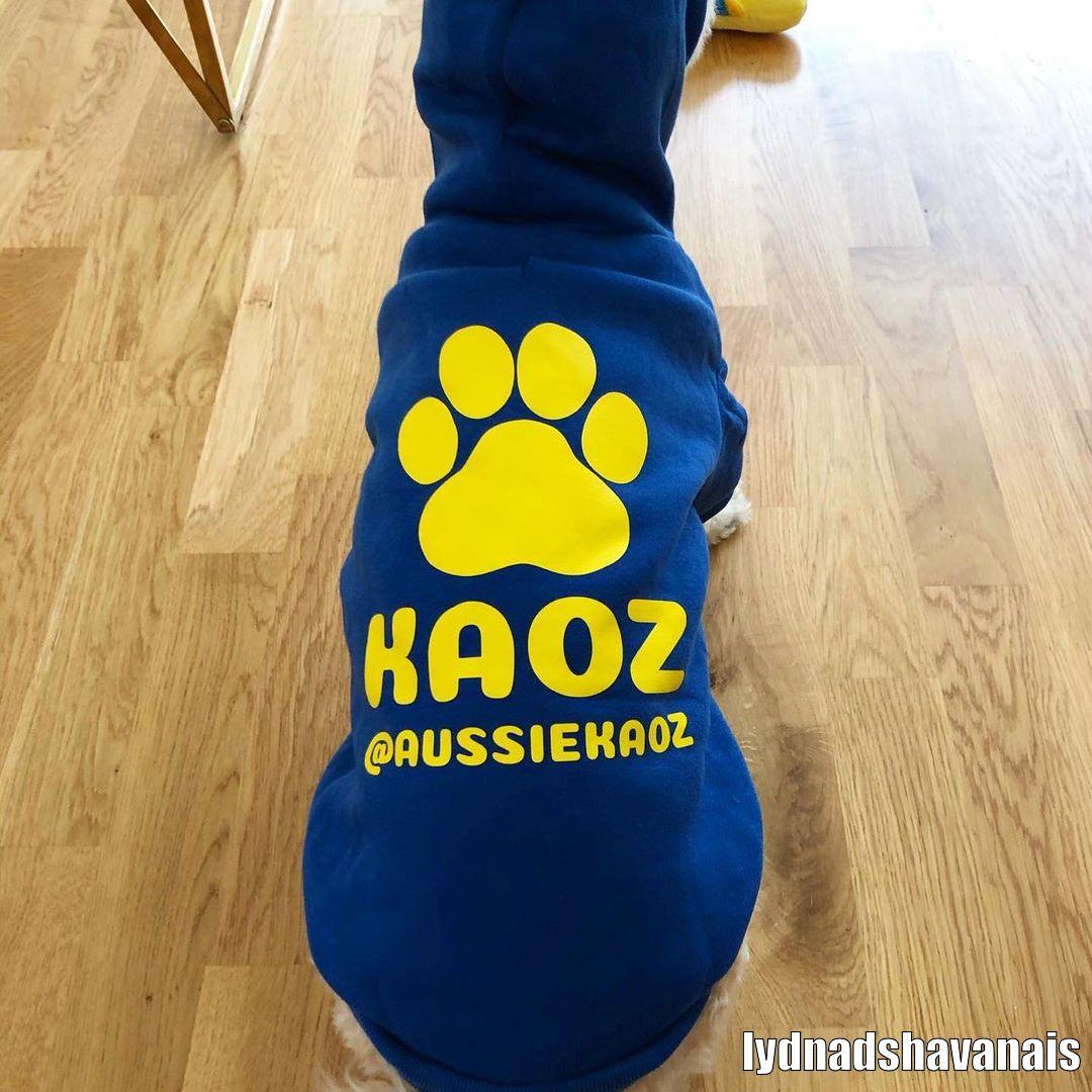 Designa Din Egen Hoodie Hundtröja - Kundbild