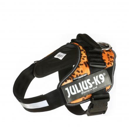 Julius-K9 IDC Sele Leopard