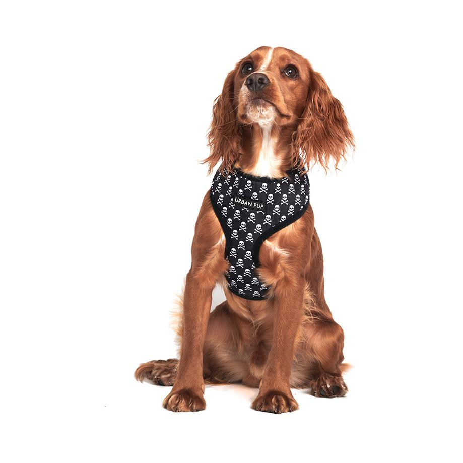 Urban Pup Harness - Skulls & Crossbones