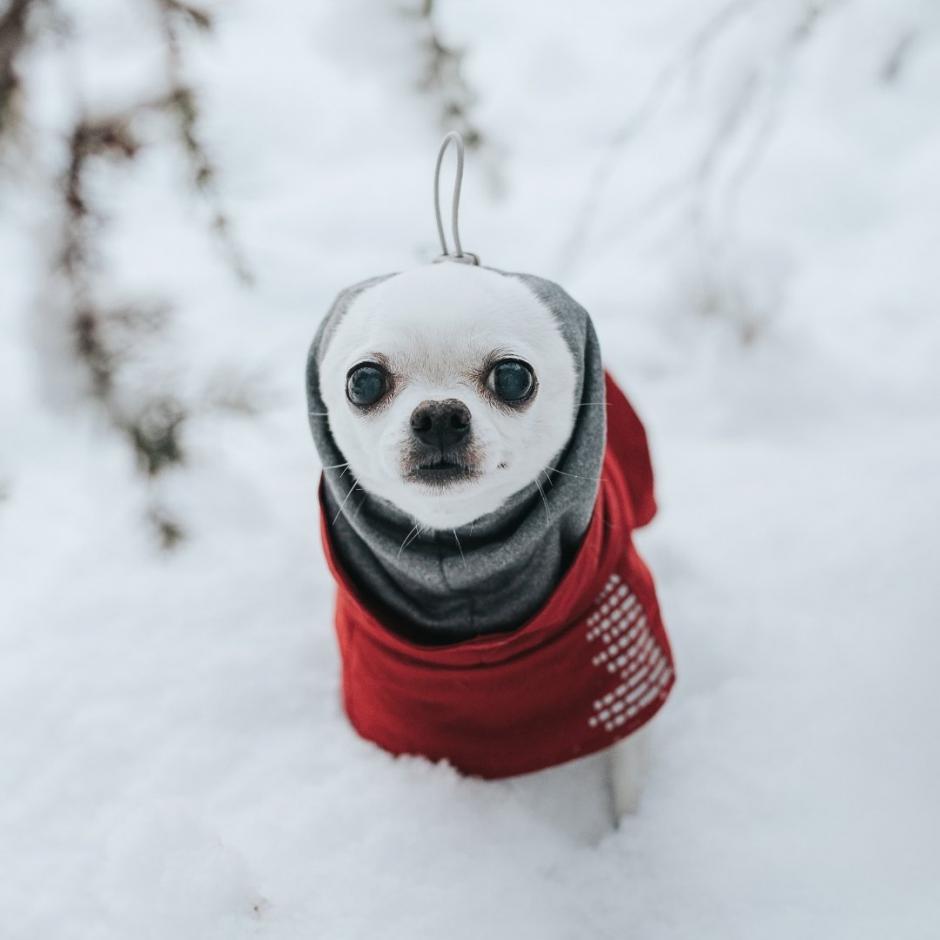 Hurtta Extreme Warmer -