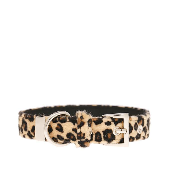 Urban Pup Halsband - Leopard