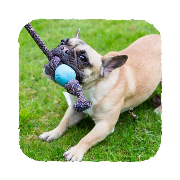 Beco Ball On A Rope Hundleksak -