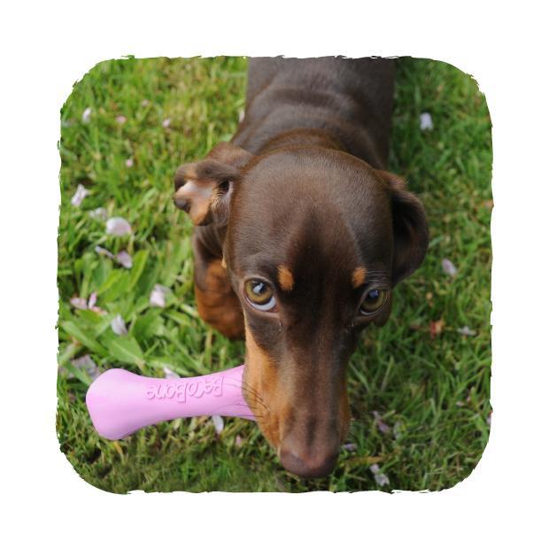 Beco Bone Hundleksak -