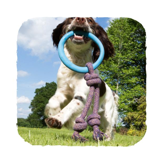 Beco Hoop On a Rope Hundleksak -
