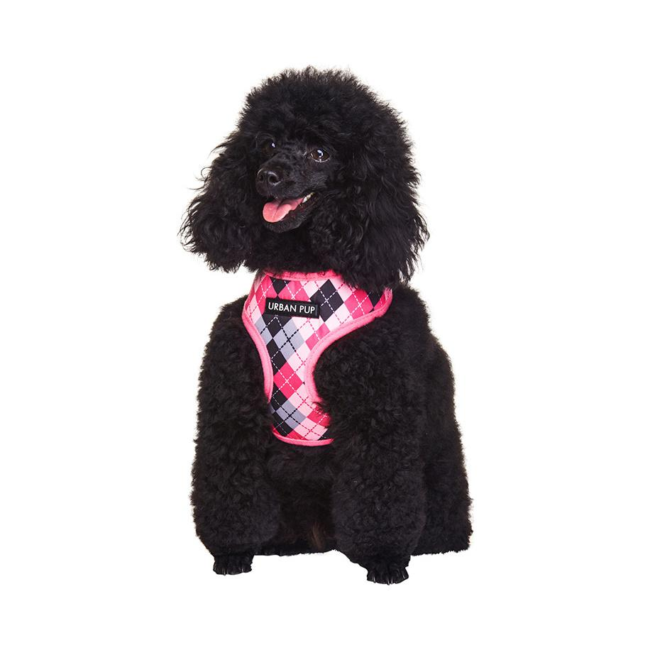 Urban Pup Harness - Pink Argyle