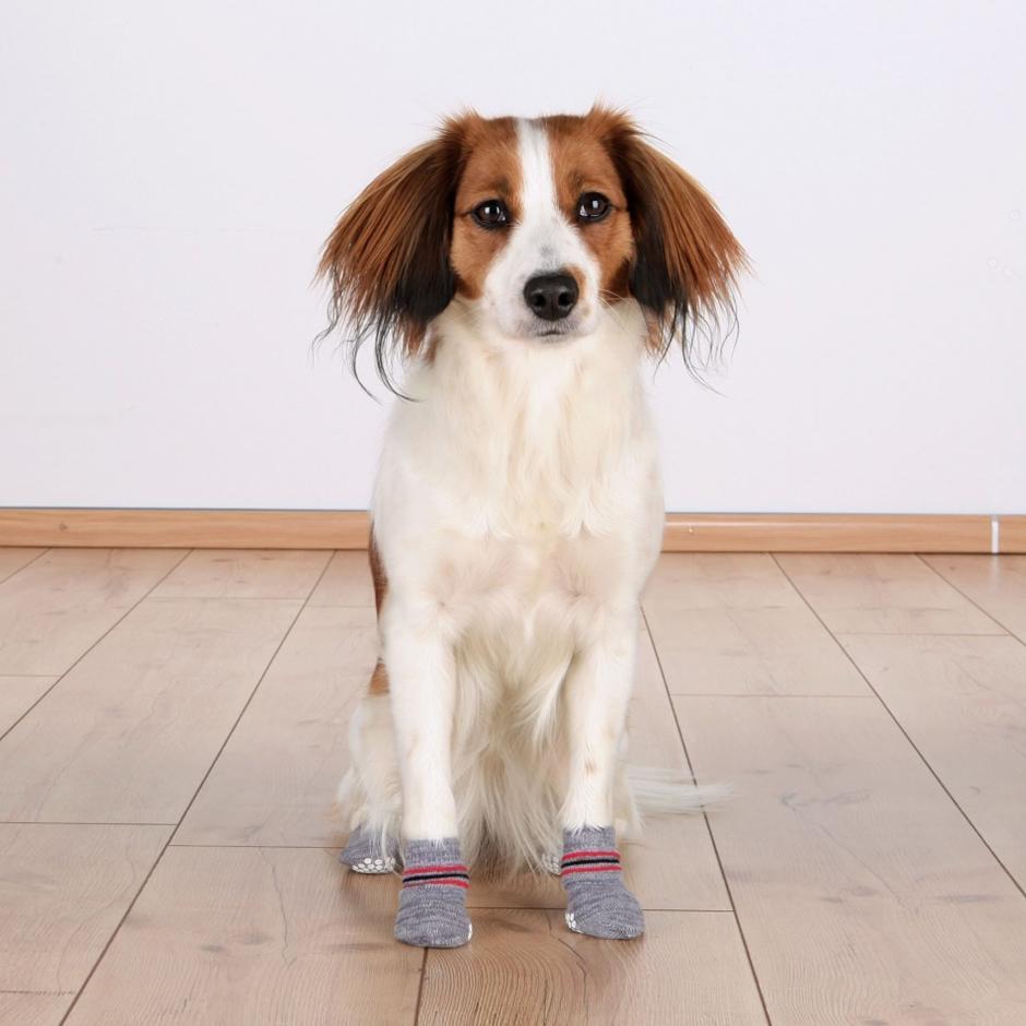 Trixie Hundstrumpor -