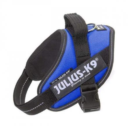Julius-K9 IDC Sele Blå