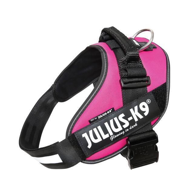 Julius-K9 IDC Sele Cerise - Size: 2
